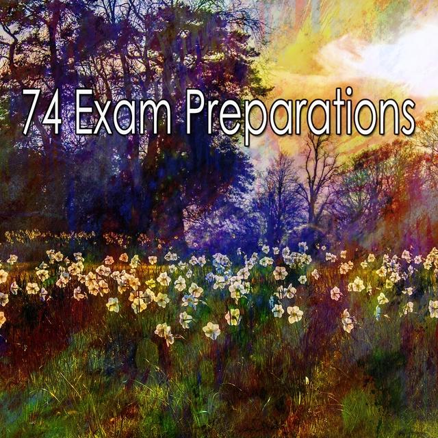 74 Exam Preparations