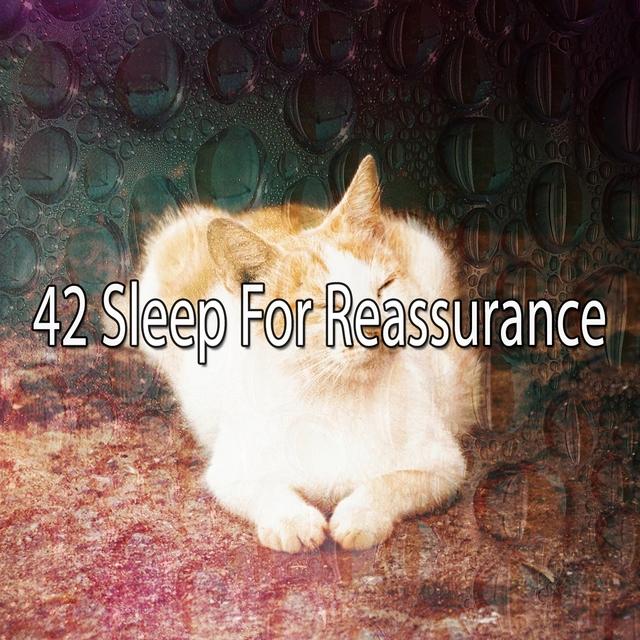 42 Sleep for Reassurance