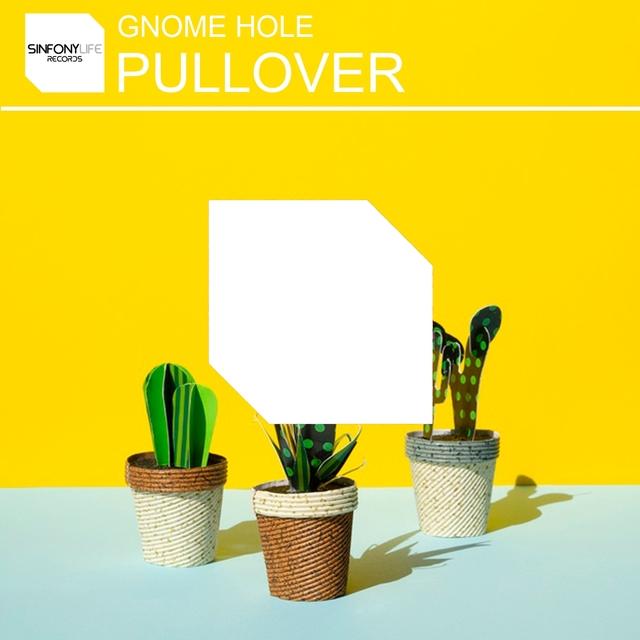 Couverture de Pullover