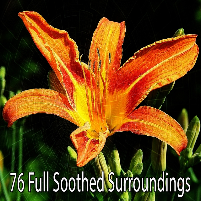 76 Full Soothed Surroundings