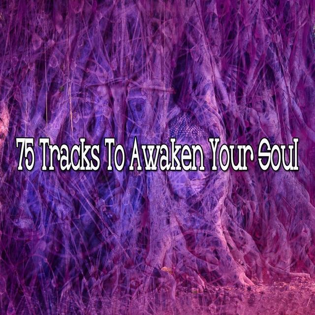 75 Tracks to Awaken Your Soul