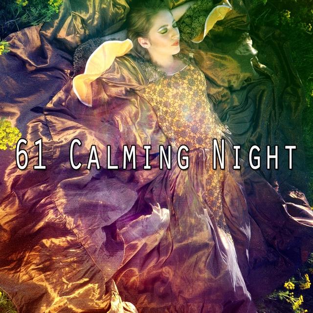61 Calming Night