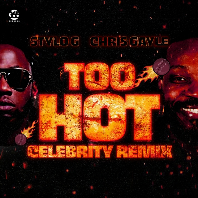 Too Hot Celebrity Remix
