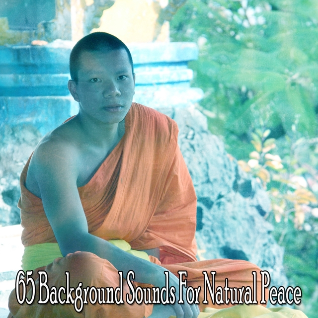 65 Background Sounds for Natural Peace