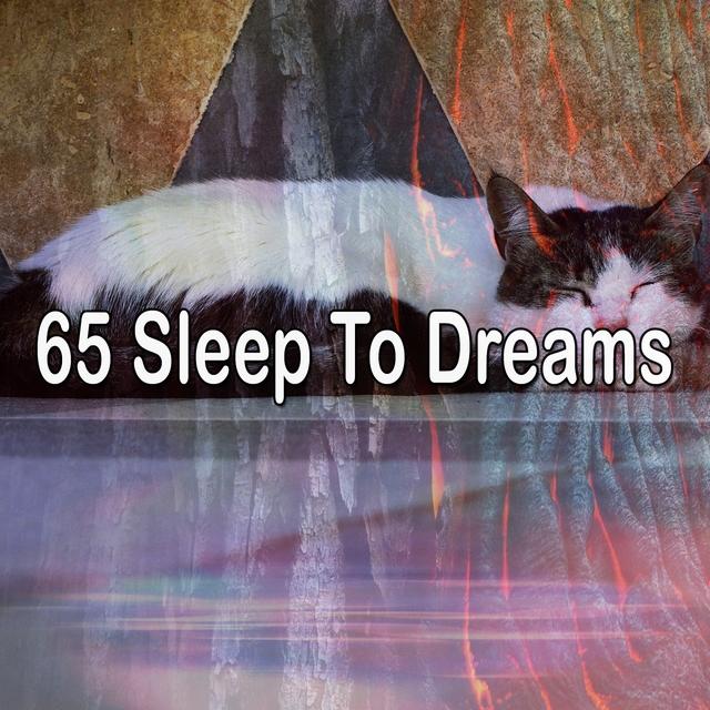 65 Sleep to Dreams