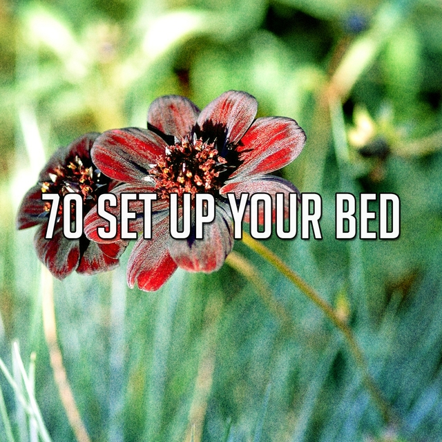 70 Set up Your Bed