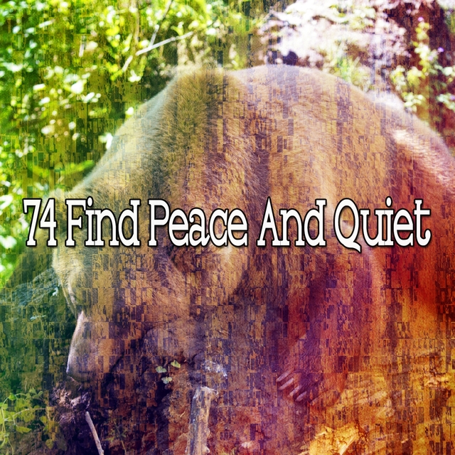 74 Find Peace and Quiet