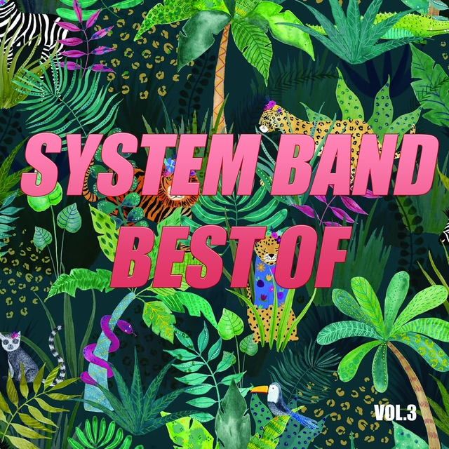 Best of system band