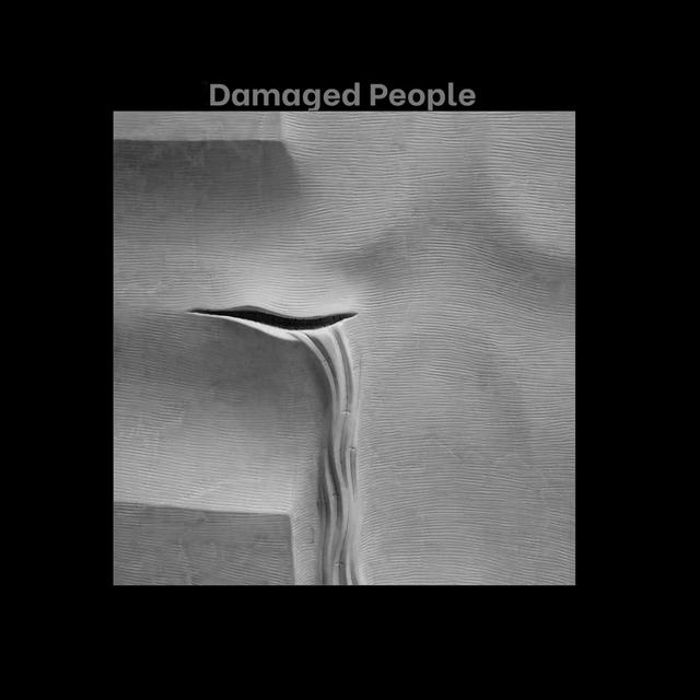 Damaged People