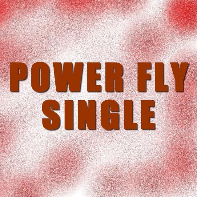 Single power fly