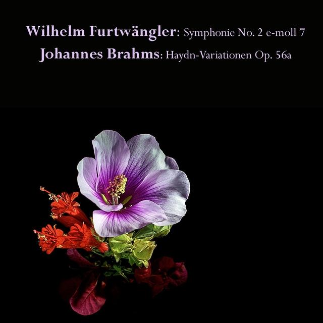 Wilhelm Furtwängler: Symphonie No. 2 e-moll 7 / Johannes Brahms: Haydn-Variationen Op. 56a