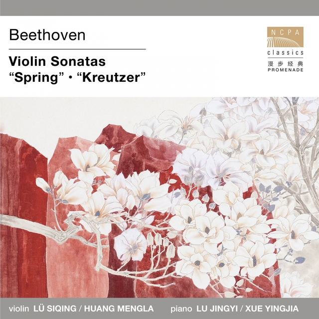 Beethoven: Violin Sonatas - Spring & Kreutzer