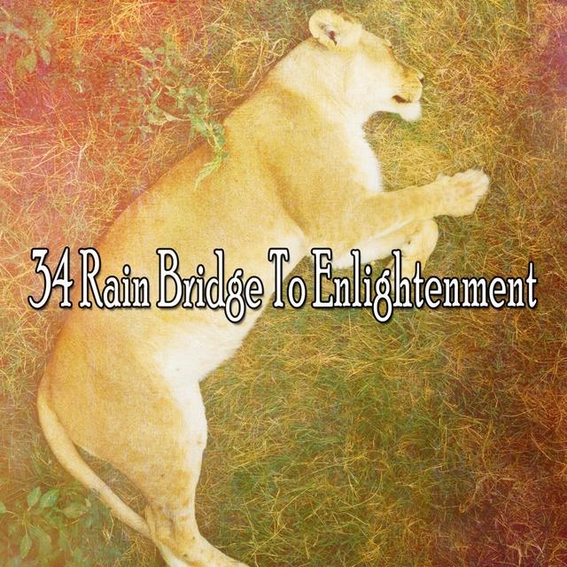 34 Rain Bridge to Enlightenment