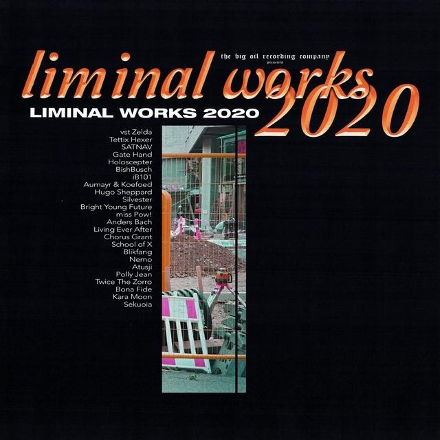 Couverture de Liminal Works 2020