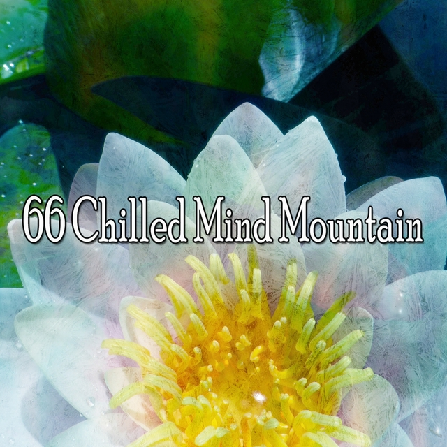66 Chilled Mind Mountain