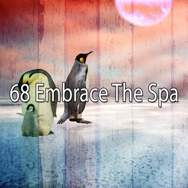 68 Embrace the Spa