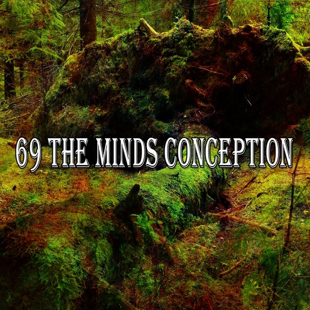 69 The Minds Conception