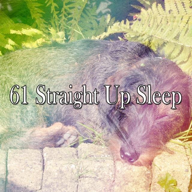 61 Straight up Sle - EP