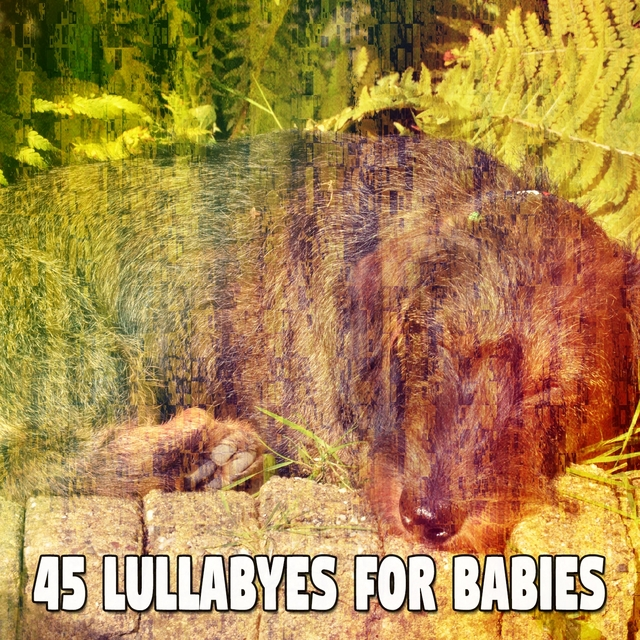 45 Lullabyes for Babies