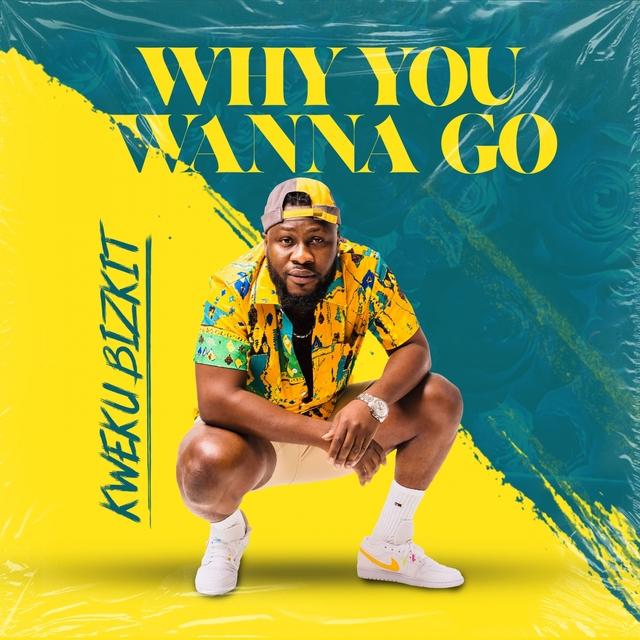 Why You Wanna Go