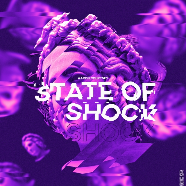 Couverture de State of Shock