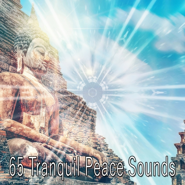 65 Tranquil Peace Sounds