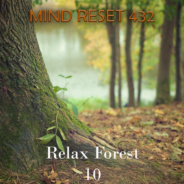 Relax Forest