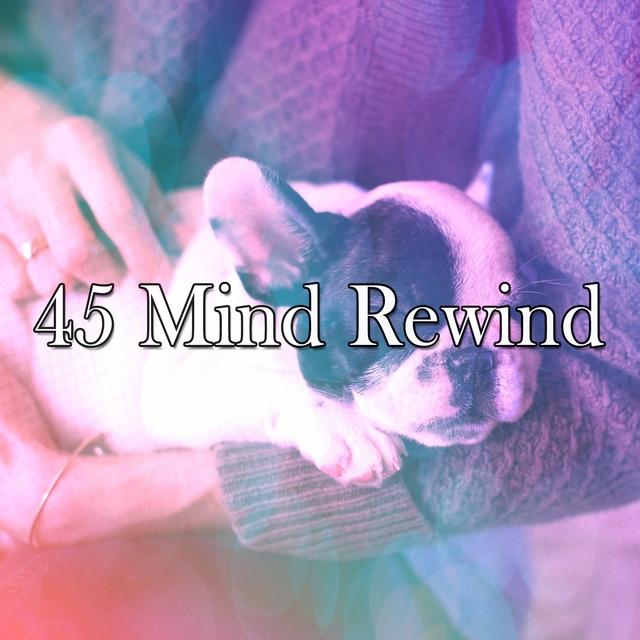 45 Mind Rewind