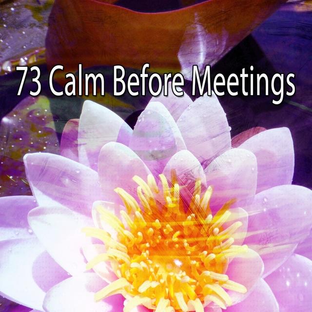 73 Calm Before Meetings