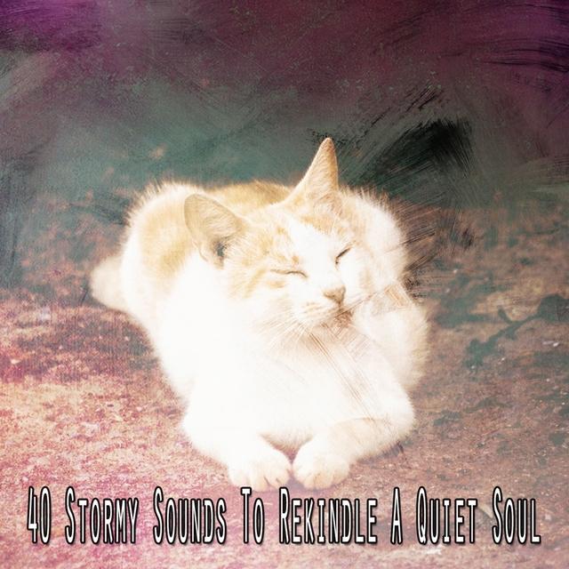 40 Stormy Sounds to Rekindle a Quiet Soul
