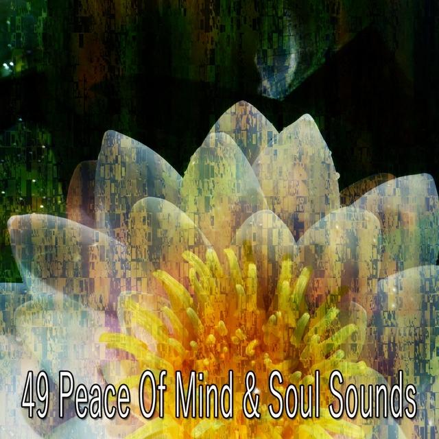 49 Peace of Mind & Soul Sounds