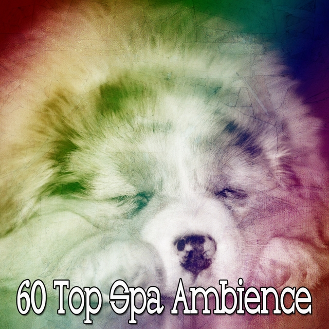 60 Top Spa Ambience