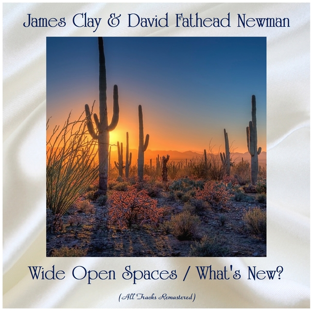 Wide Open Spaces / What's New?