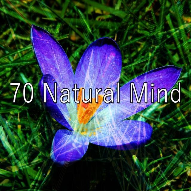 70 Natural Mind