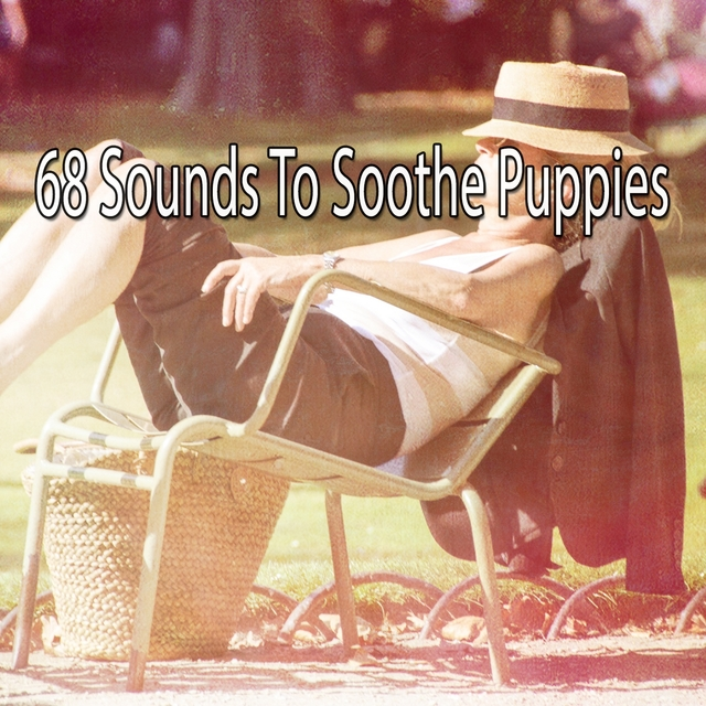 68 Sounds to Soothe Puppies