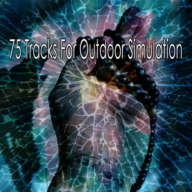75 Tracks for Outdoor Simulation