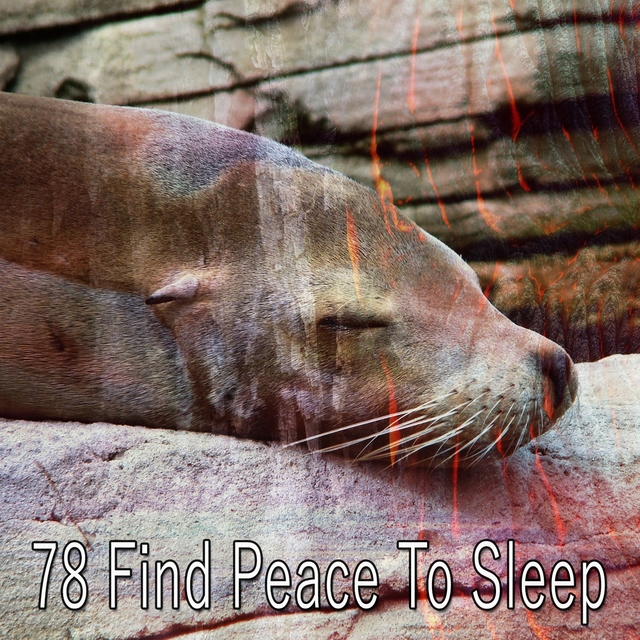 78 Find Peace to Sle - EP