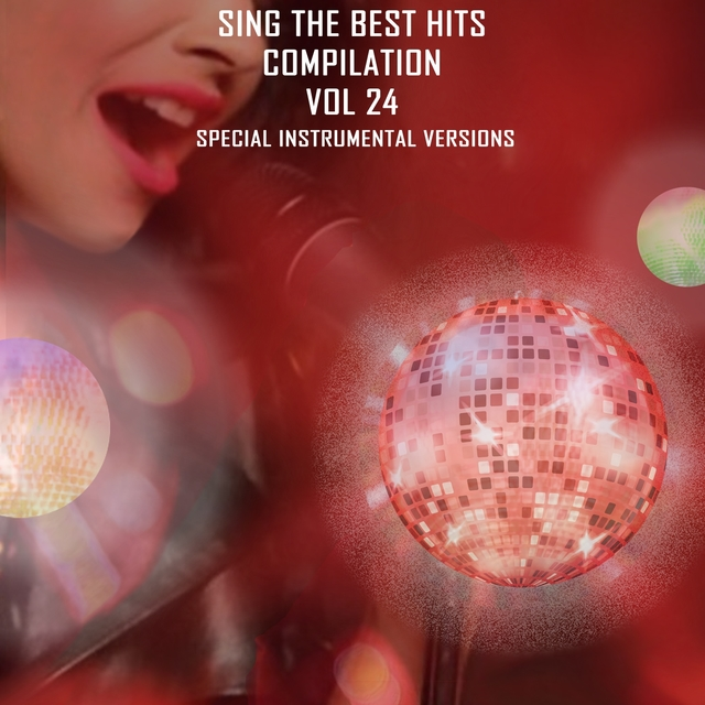 Sing The Best Hits Vol. 24