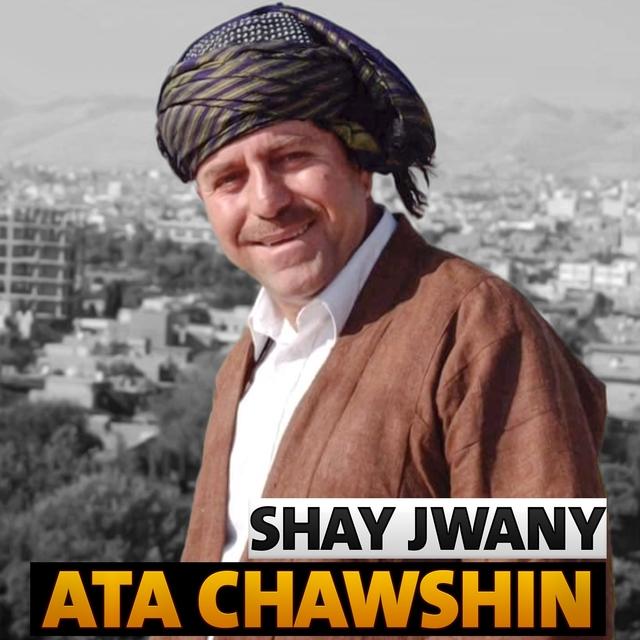 Shay Jwany