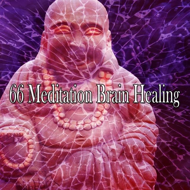 66 Meditation Brain Healing