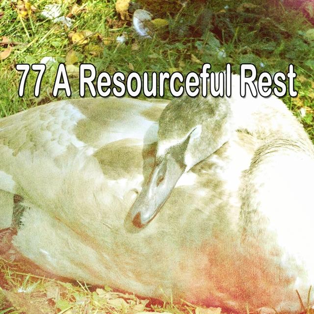 77 A Resourceful Rest