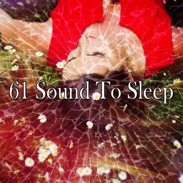61 Sound to Sle - EP