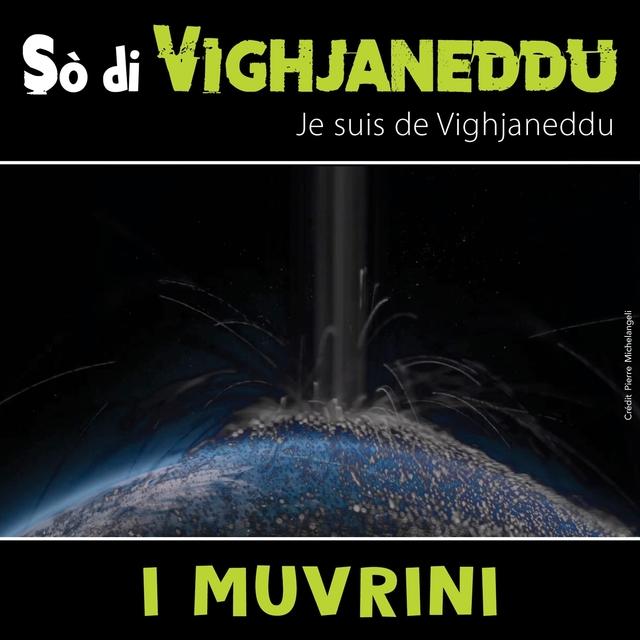 So Di Vighjaneddu