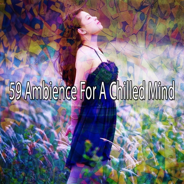 Couverture de 59 Ambience for a Chilled Mind