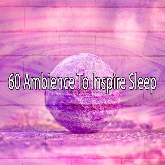 Couverture de 60 Ambience to Inspire Sle - EP