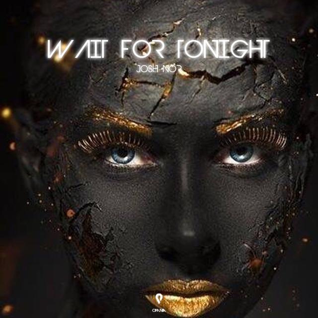 Couverture de Wait For Tonight