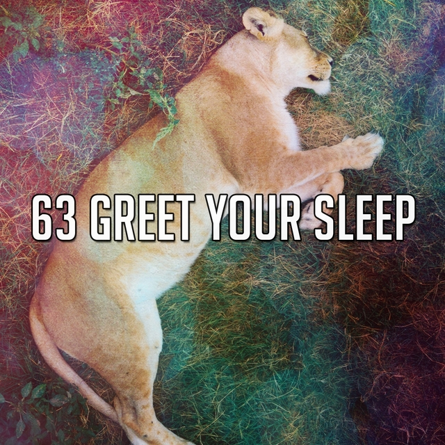 63 Greet Your Sle - EP