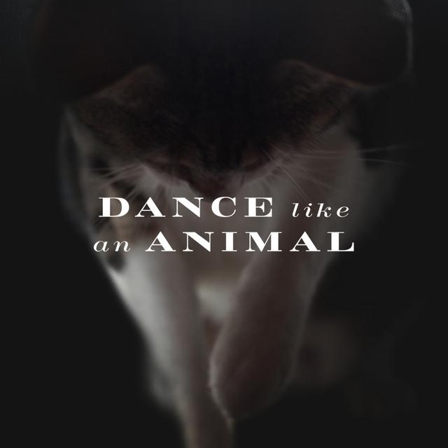 Dance Like an Animal