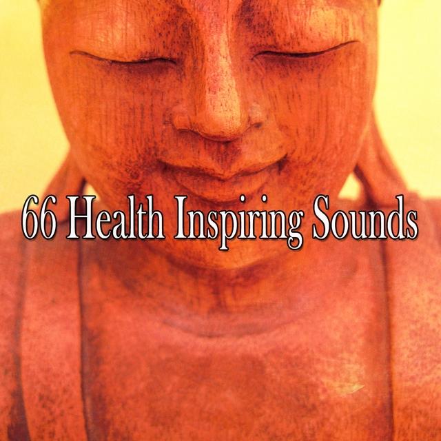 Couverture de 66 Health Inspiring Sounds