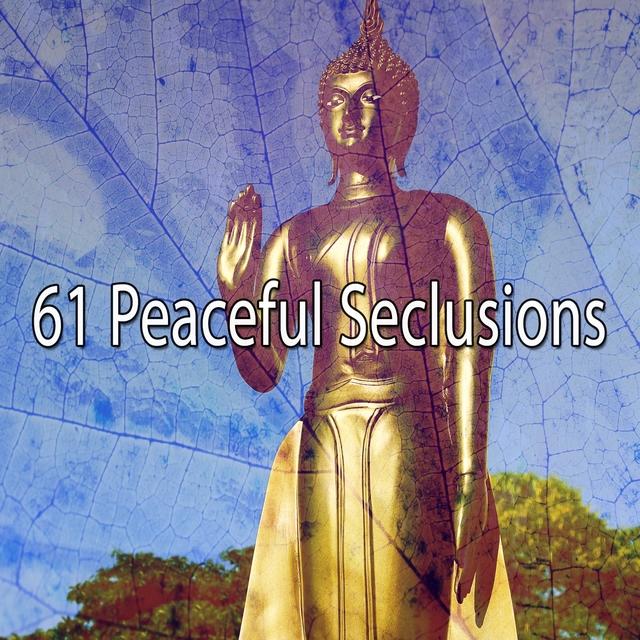 Couverture de 61 Peaceful Seclusions